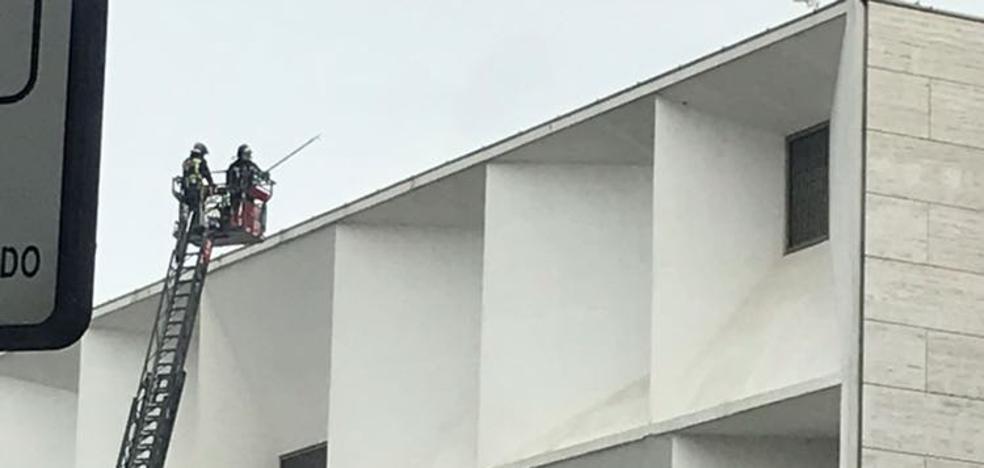 Los Bomberos intervienen para limpiar lajas de hielo de la fachada del Auditorio de León
