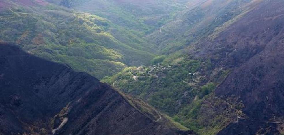 El ganadero de Bouzas investigado por el incendio en la Tebaida no se presenta a declarar por culpa de la niebla