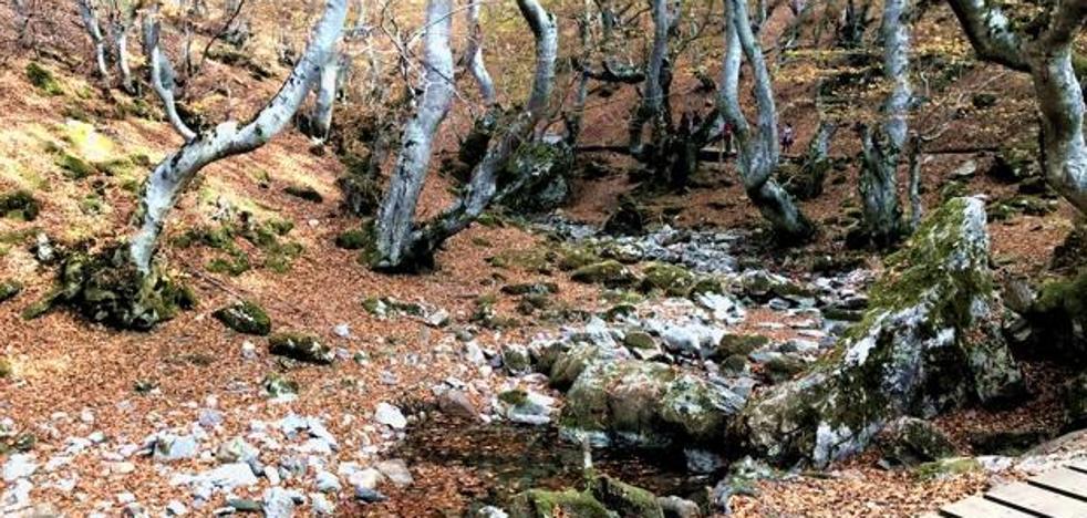 Los Tesoros Ocultos de León y las fiestas populares de la provincia protagonizan la oferta turística de la Diputación en Fitur