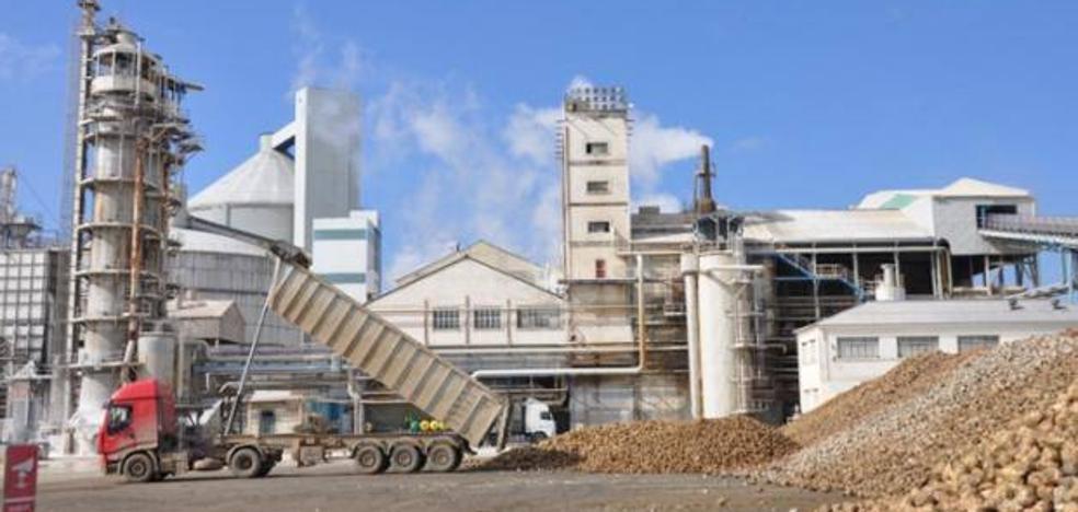 Azucarera ofrece un precio base de 25,45 euros tonelada, más la compensación por pulpa y los complementos de estabilidad y sostenibilidad