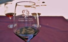 Seis bodegas representarán a la DO Tierra de León en el Salón de los Grandes Vinos de Castilla y León