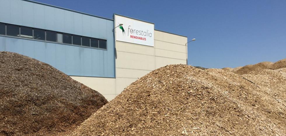Suárez-Quiñones afirma que la planta de biomasa de Cubillos del Sil cumplirá las normas y atribuye las críticas al desconocimiento