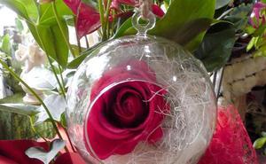 Luis Alsán, flores que enamoran