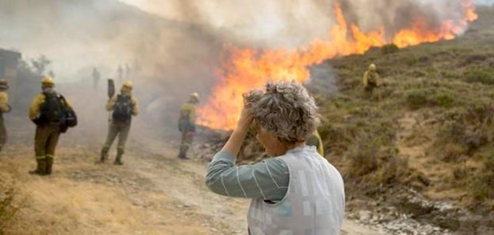 La inversión para restaurar las zonas afectadas por los incendios de La Cabrera del 2017 suma tres millones