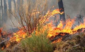 Podemos pide aprovechar la capacidad de las brigadas ELIF en la lucha contra los incendios