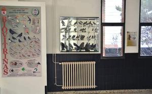 La faculta de Biológicas instala una estación de alimentación para aves