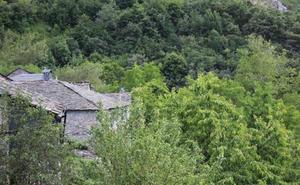 Una investigación en Compludo buscará este verano el origen del fenómeno monástico en la Tebaida berciana