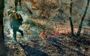 Robledo de las Traviesas sufre el primer incendio forestal de 2018 en la provincia de León