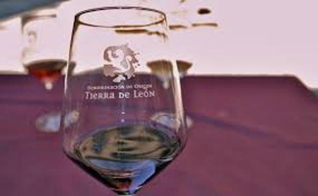 La DO Tierra de León lleva el madreo al Congreso Internacional del Vino Rosado