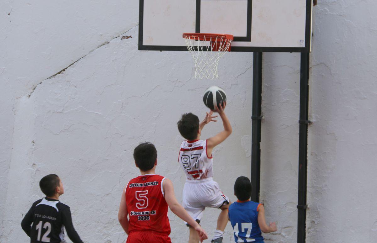 El Leonés celebra su popular Torneo de Minibasket