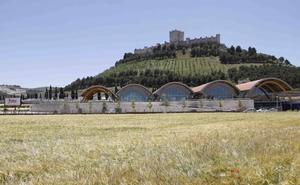 La Ruta del Vino Ribera del Duero roza los 400.000 visitantes en 2017