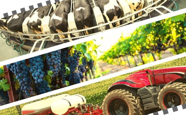 Agrícolas acogerá la primera edición de Finagro