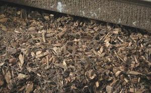 Los primeros informes técnicos califican de «inmaculado» el proyecto de la central de biomasa en Navatejera