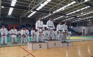 El judo leonés logra seis medallas en el ránking autonómico infantil