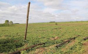 Asaja critica la subida de los fertilizantes en el periodo de máximo consumo en Castilla y León