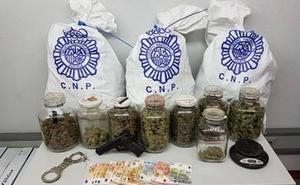 La Policía desmantela un piso en León dedicado al cultivo indoor de marihuana