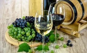 La gestión de las empresas vitivinícolas centra el interés de un curso de la ULE