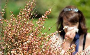 El Ayuntamiento edita 5.000 dípticos con consejos para paliar los efectos de la alergia al polen