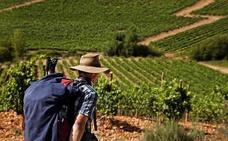 La DO Bierzo presenta sus vinos de 27 bodegas en el Salón de Gourmets