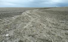 Las intensas tormentas inquietan a las zonas grícolas de regadío