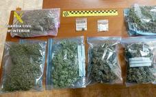 Dos detenidos por el cultivo de marihuana en el interior de una vivienda en Bembibre