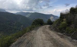 El vial a Peñalba estará cortado durante «meses» y Diputación habilitará el Alto de la Cruz