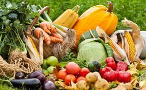 Cacabelos acoge una jornada de promoción de la producción ecológica en el sector agrícola