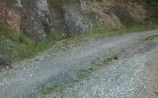 Piden a Diputación que convierta en carretera el camino entre San Vicente y Vega de Espinareda