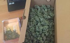 La Policía detiene a un joven por presunto tráfico de marihuana en el barrio de la Placa de Ponferrada