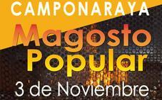 Camponaraya enaltece la castaña con su magosto popular