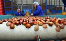 La Junta destina 20,5 millones a inversiones de industrias agroalimentarias y forestales