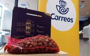 Más de siete toneladas de castañas del Bierzo ya han viajado con Correos con el servicio especial de envíos