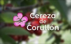 La cereza de Corullón se vende en INTUR