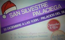 La San Silvestre Palaciega de Palacios del Sil dona su recaudación a la asociación Somos Diversos