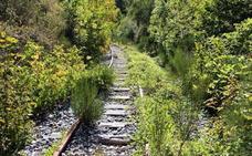 El Consorcio del Ponfeblino reclamará 100.000 euros a la Junta para el mantenimiento de la línea del antiguo tren minero