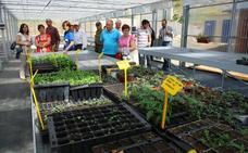 El vivero de Ciuden en Igüeña entrega mañana los 18 diplomas a los alumnos del taller de empleo Colinas