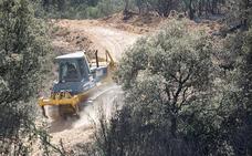 Colectivos ecologistas creen una amenaza la apertura de una pista forestal en la Sierra de la Lastra
