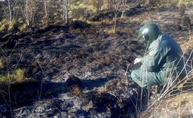 La Guardia Civil investiga a una persona por el incendio forestal en los montes de Sigüeya (Benuza)