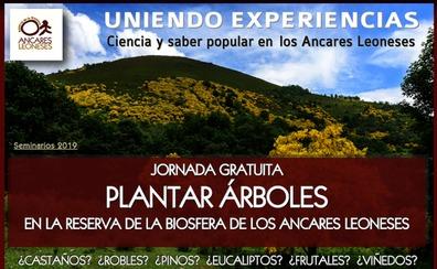 La Reserva de Ancares organiza una jornada sobre plantaciones de árboles en el territorio