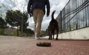 La campaña de control de la ordenanza de mascotas en Ponferrada acumula diez denuncias en un fin de semana