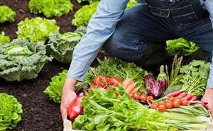 El Banco de Tierras del Bierzo imparte en Carracedelo un taller gratuito sobre agricultura ecológica