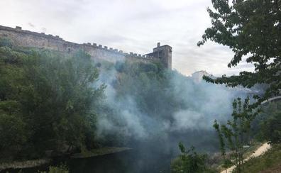 La rápida intervención de los Bomberos ataja un incendio en la ladera del Castillo de los Templarios