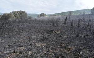 Logran controlar un incendio intencionado en Torre del Bierzo y se activa otro en Berlanga