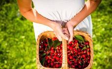Cerezas, la golosina antioxidante del verano