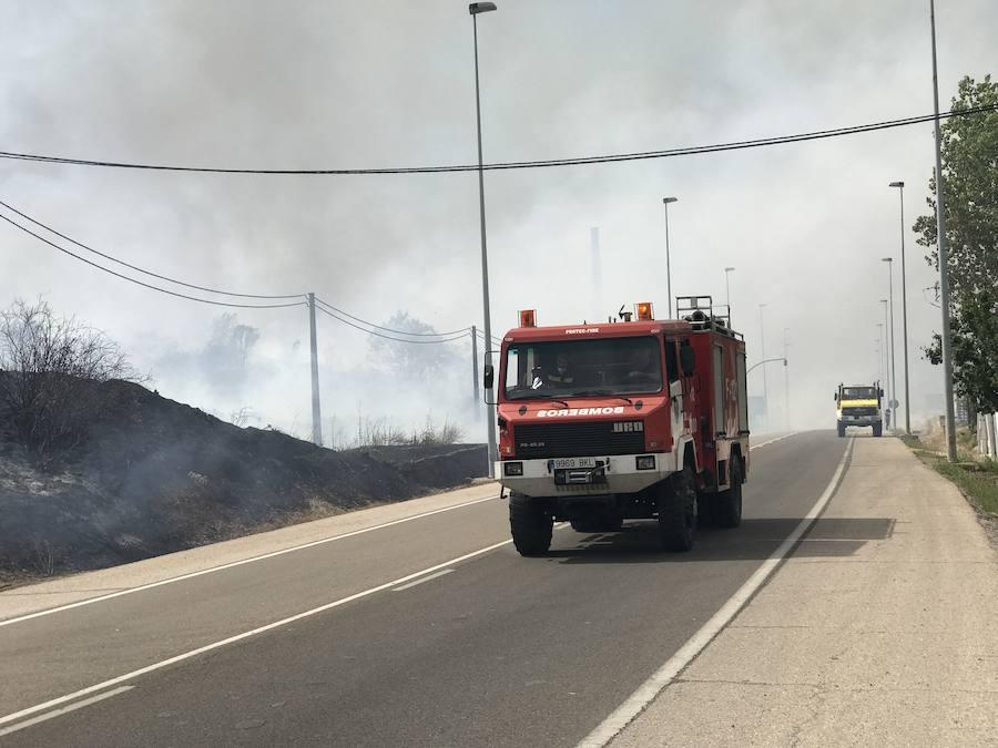 Imágenes del Incendio que amenazó el norte de León I