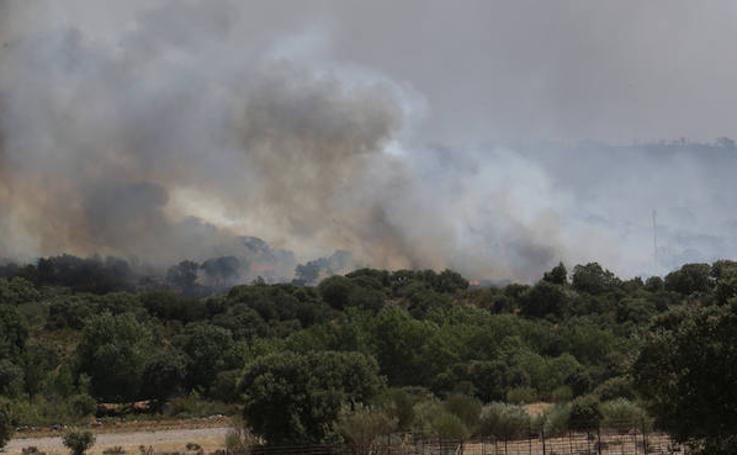 Incendio en Pino de Oro, Zamora