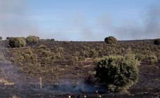 Extinguidos los dos incendios que permanecían activos en la provincia