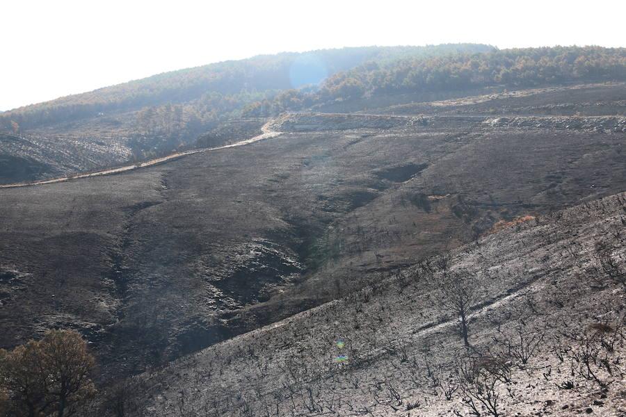 La Cabrera, la desolación tras el fuego