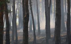 La Cabrera se prepara para una gran concentración de repulsa contra el fuego