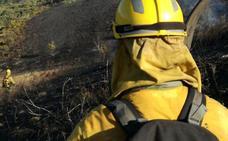 Un fuego intencionado provoca la muerte de varias ovejas y perros en Folgoso de la Ribera
